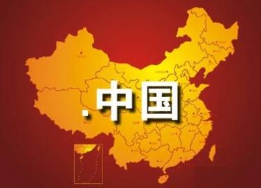 中文域名案例