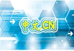 中文.CN